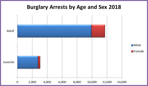 2018 burglary arrests by age and sex. 2,768 juvenile males. 272 juvenile females.  9,914 adult males.  1,806 adult females.